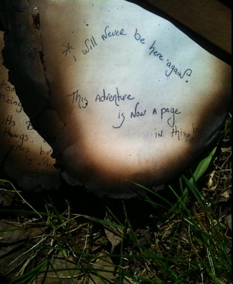 burned-diary.jpg