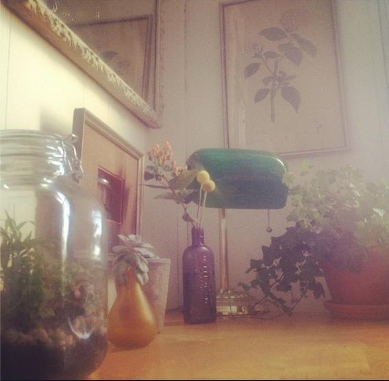 kitchen-garden.jpg