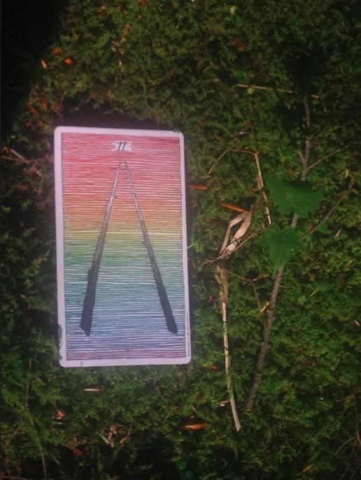 2-of-wands-wild-unknown-tarot.jpg