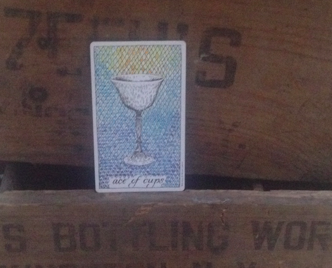 ace-of-cups-wild-unknown-tarot.jpg