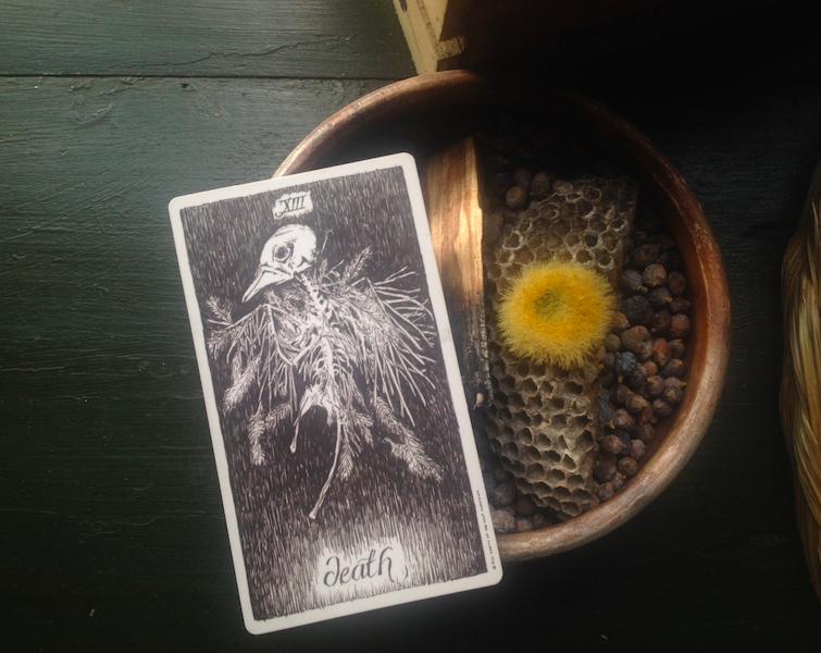 death-wild-unknown-tarot.jpg