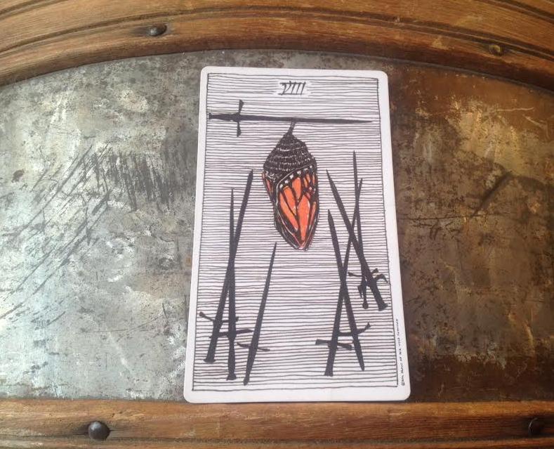 8-of-wands-wild-unknown-tarot.jpg