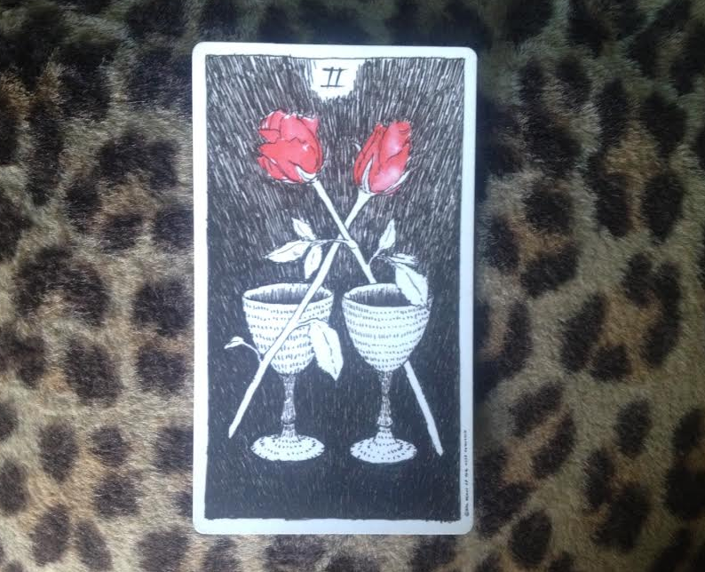 2-of-cups-wild-unknown-tarot.jpg