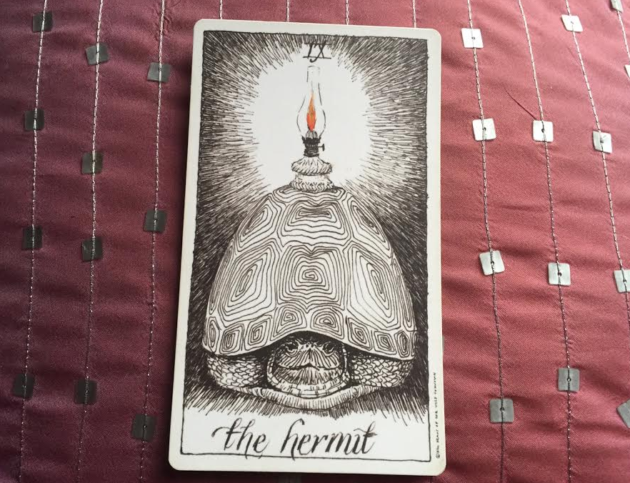 the-hermit-wild-unknown-tarot.jpg